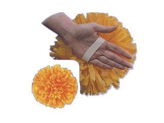 Solid Hand Pom 4 and 6 inch
